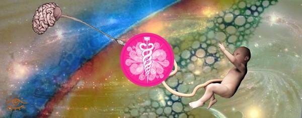aa facebook banner umbiloco + brain